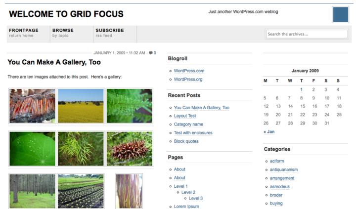 Grid Focus Theme
