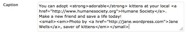Screenshot of html caption