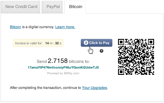 Bitcoin payment interface
