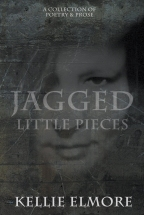 Jagged Little Pieces from Winter Goose Publishing