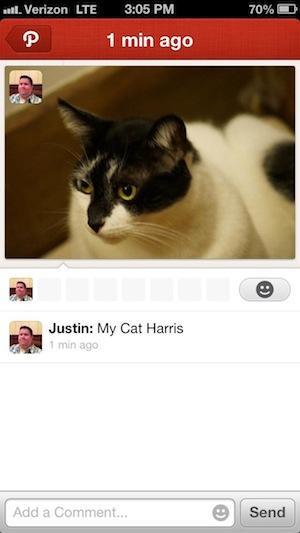 猫の写真を含む Path のモーメント。