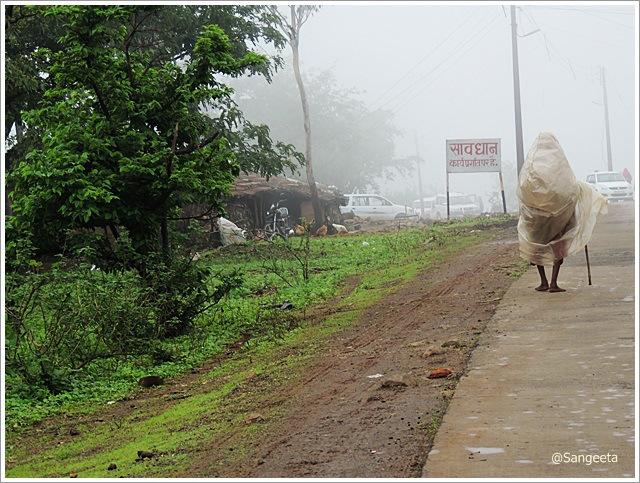 Photo by Sangeeta