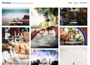 New Premium Themes: Small Business and Photo Blog 8
