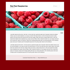 Raspberry Header Color Match