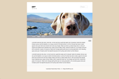 Weimaraner Header Color Match